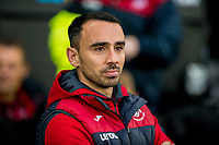 Swansea City caretaker Manager, Leon Britton looks during the Premier League match between Swansea City and Crystal Palace at The Liberty Stadium, Swansea, Wales, UK. Saturday 23 December 2017