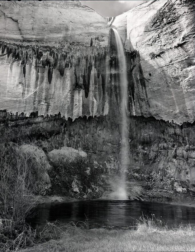 The 88' Upper Calf Creek Falls is not as popular as its companion 126' Lower Falls and is much more difficult to reach.  Both falls are created by the spring fed, year-round flowing of Calf Creek, which happens to be well stocked with trout.  <br /> This scene contains four primary elements: the delicate falls, the upper wall with strong textures, the lower wall with subtle surface variations, and the dark pool of water at the base.  This was a hike worth making.<br /> <br /> Technical info:  Toyo 45A, 150mm lens, Acros 100 film, polarizing filter, 1/4th s@F22, dev. HS 110, wet-mount scan Epson V750, finished PS.