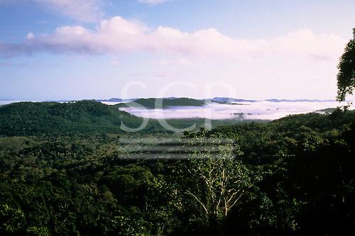 Bahia, Brazil. Mata Atlantica (Atlantic Rainforest) in the early morning with mist still lying in the valleys.