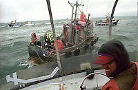 Skipper Martin Speak of the F/V Little Moose looks for a place to make a set on the North line Egegik River District in Bristol bay, Alaska on July 9, 1998.  Bristol Bay is home to the world's largest sockeye salmon fishery managed by the Alaska Department of Fish & Game.  It is a sustainable fishery.  The commercial salmon drift gillnet fishing fleet is limited to boats no longer than 32 feet in length.  There were over 1,800 permanent entry permits listed in 2002 required by every boat.  Typically boats fish with two or three deckhands.  Peak of the season is around July 4th in this fishery which lasts about a month. The rivers also get a fair amount of chum, king, and chinook salmon.  Bristol Bay is located in the southwest part of Alaska.