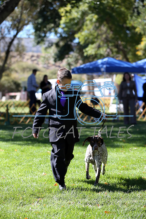 Adam Hillyard, 9, of Sparks, and his dog Vanna compete in the German Shorthaired Pointer specialty event at the Bonanza Kennel Club of Carson City's 24th Annual Dog Shows and Trials at Fuji Park in Carson City, Nev., on Friday, Sept. 27, 2013. <br /> Photo by Cathleen Allison/Nevada Photo Source