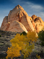 Rock formations and fall color in Capitol Reef National Park, Utah
