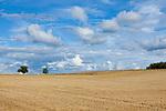 Europa, DEU, Deutschland, Baden-Wuerttemberg, Odenwald, Typische Landschaft, Hochflaeche, Agrarlandschaft, Wolkenstimmung, Cumuluswolken, Agrarlandschaft, Quellbewoelkung mit Eintruebung, Natur, Umwelt, Landschaft, Jahreszeiten, Stimmungen, Landschaftsfotografie, Landschaften, Landschaftsphoto, Landschaftsphotographie, Wetter, Himmel, Wolken, Wolkenkunde, Wetterbeobachtung, Wetterelemente, Wetterlage, Wetterkunde, Witterung, Witterungsbedingungen, Wettererscheinungen, Meteorologie, Bauernregeln, Wettervorhersage, Wolkenfotografie, Wetterphaenomene, Wolkenklassifikation, Wolkenbilder, Wolkenfoto, <br /> <br /> [Fuer die Nutzung gelten die jeweils gueltigen Allgemeinen Liefer-und Geschaeftsbedingungen. Nutzung nur gegen Verwendungsmeldung und Nachweis. Download der AGB unter http://www.image-box.com oder werden auf Anfrage zugesendet. Freigabe ist vorher erforderlich. Jede Nutzung des Fotos ist honorarpflichtig gemaess derzeit gueltiger MFM Liste - Kontakt, Uwe Schmid-Fotografie, Duisburg, Tel. (+49).2065.677997, ..archiv@image-box.com, www.image-box.com]