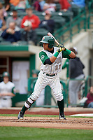 Fort Wayne TinCaps shortstop Reinaldo Ilarraza (12) at bat during a game against the Wisconsin Timber Rattlers on May 10, 2017 at Parkview Field in Fort Wayne, Indiana.  Fort Wayne defeated Wisconsin 3-2.  (Mike Janes/Four Seam Images)