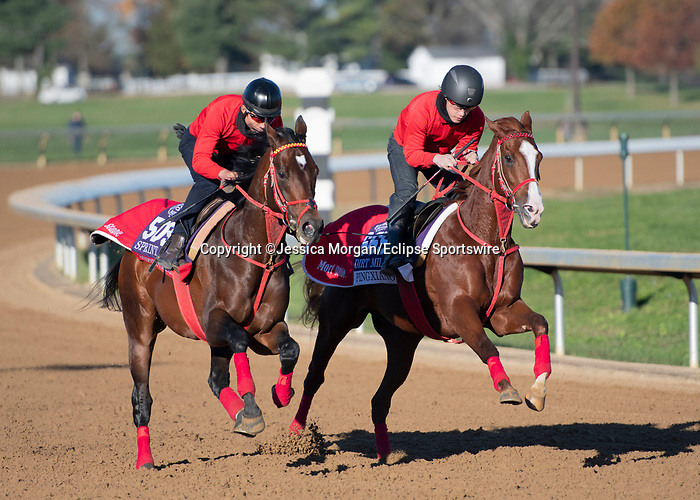 November 4, 2020: Jasper Prince (outside) and Pingxiang (inside), trained by trainer Hideyuki Mori, breeze in preparation for the Breeders' Cup Dirt Mile at Keeneland Racetrack in Lexington, Kentucky on November 4, 2020. Jessica Morgan/Eclipse Sportswire/Breeders Cup