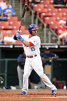Buffalo Bisons catcher Mike Nickeas (15) at bat during a game against the Gwinnett Braves on May 13, 2014 at Coca-Cola Field in Buffalo, New  York.  Gwinnett defeated Buffalo 3-2.  (Mike Janes/Four Seam Images)