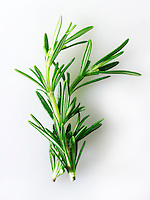 Fresh Rosemary leaves
