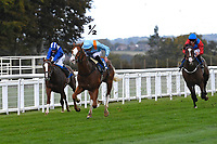 Winner of The PKF Francis Clark British EBF Novice Stakes (Plus 10) (Div 2 The Rosstafarian (pale blue) ridden by James Doyle and trained by Hugo Palmer during Horse Racing at Salisbury Racecourse on 1st October 2020
