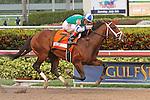 March 28, 2015:  #7 Materiality (KY) with jockey John Velazquez defeats #9 Upstart (NY)  with jockey Jose Ortiz on board,  The Florida Derby G1 on Florida Derby Day at Gulfstream Park  in Hallandale Beach, Florida.    Liz Lamont/ESW/CSM