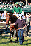 08 October 2011.  Gio Ponti and jockey Ramon Dominguez win the 26th running of the Shadwell Turf Mile, GRI $600,000 at Keeneland Racecourse.  Owner Castleton Lyons Farm, Shane Ryan, Trainer Christophe Clement.