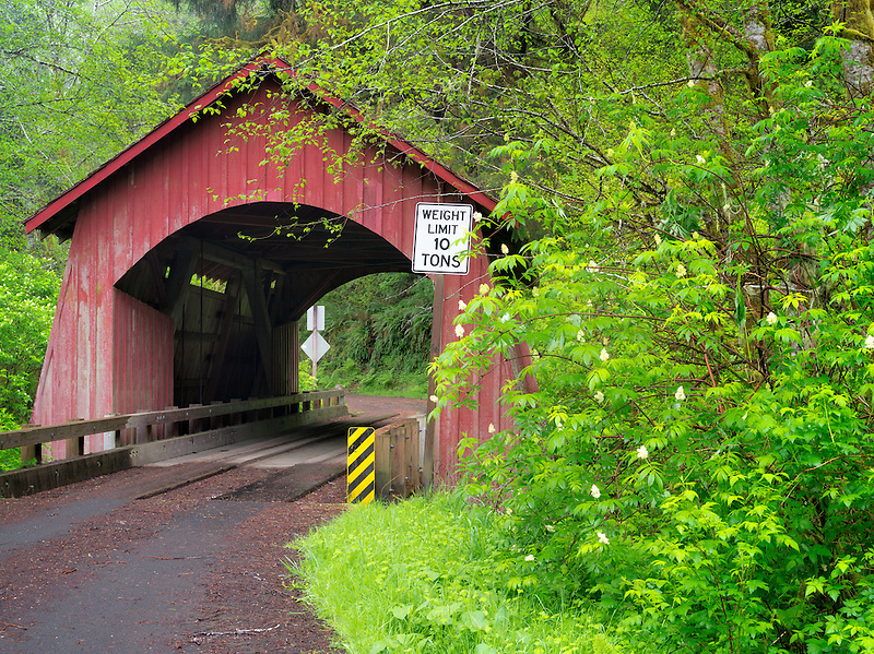 North Fork of the Yachats Covered Bridge. Oregon