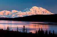 Mt Denali and Wonder Lake with pink alpenglow light reflecting in the lake, Denali National Park, Interior, Alaska