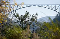 Europe/France/Midi-Pyrénées/81/Tarn/ Viaduc du Viaur