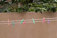 Washing line, Tauranga 2011