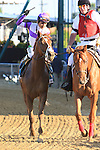 Kentucky Derby winner I'll Have Another with Mario Gutierrez beat Bodemeister in the 137th Grade I Preakness Stakes for 3-year olds at 1 3/16 mile at Pimlico Racetrack. Trainer Doug O'Neill. Owner Reddam Racing LLC.