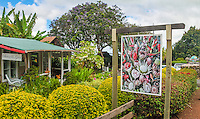 The Proteas of Hawaii flower gift shop by the Kula Lodge on Maui.