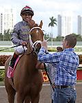 February 07, 2015: Sandiva (IRE) with jockey Javier Castellano on board wins the Suwannee River G3 Stakes at Gulfstream Park in Hallandale Beach, Florida.    Liz Lamont/ESW/CSM
