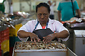 18/02/16 <br /> <br /> Traders prepare and sell today's catch at Panama City fish market, Panama.<br /> <br /> All Rights Reserved: F Stop Press Ltd. +44(0)1335 418365   +44 (0)7765 242650 www.fstoppress.com