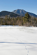 Mount Passaconaway in Albany, New Hampshire USA from along the Kancamagus Scenic Byway during the winter months