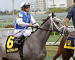 March 29, 2014: #6 In Tune (KY) with jockey Javier Castellano up in the post parade of the Gulfstream Oaks G2 at Gulfstream Park in Hallandale Beach, FL. Liz Lamont/ESW/CSM