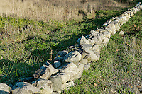 Rustic fieldstone wall, Massachusetts, USA