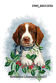 Marcello, CHRISTMAS ANIMALS, WEIHNACHTEN TIERE, NAVIDAD ANIMALES, paintings+++++,ITMCEDC1125A,#xa# ,sticker,stickers ,dog,dogs