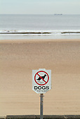 No Dogs sign on the beach at Redcar.
