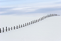 A near buried fence in the depths of winter evokes emotionsof both serenity and loneliness.