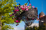 Hanging flower baskets downtown Missoula, Montana