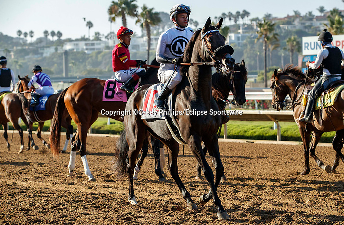 DEL MAR, CA  SEPTEMBER 5: #11 Helens Well, ridden by Flavien Prat, in the post parade of the Del Mar Juvenile Fillies Turf on September 5, 2021 at Del Mar Thoroughbred Club in Del Mar, CA.  (Photo by Casey Phillips/Eclipse Sportswire/CSM)