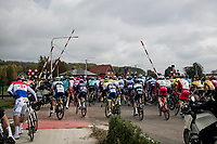 peloton leaving again after being forced to stop when a train arrived at the railroad crossing<br /> <br /> 104th Ronde van Vlaanderen 2020 (1.UWT)<br /> 1 day race from Antwerpen to Oudenaarde (BEL/243km) <br /> <br /> ©kramon