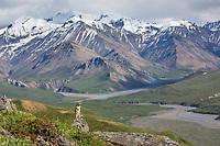 Denali National Park, Alaska.