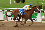 Jersey Town, ridden by Javier Castellano, wins the Kelso Handicap (GII) at Belmont Parl, in Elmont, New York on September 29, 2012