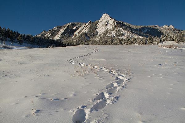 Boulder Valley, Colorado snow