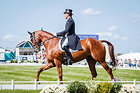 NZL-Dan Jocelyn rides Dassett Cool Touch during the Second day of Dressage. 2018 GBR-Land Rover Burghley Horse Trials CCI4*. Friday 31 August. Copyright Photo: Libby Law Photography