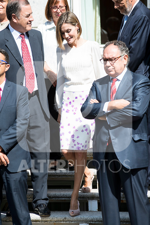 """Queen Letizia of Spain pose with the Representatives of the """"Spanish Federation for Rare Diseases FEDER"""" and """"Network of solidarity organizations"""" working with FEDER during royal audiences at Zarzuela Palace in Madrid, September 03, 2015. <br /> (ALTERPHOTOS/BorjaB.Hojas)"""