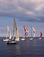 Sailboats, Pacific Ocean, Hawaii, USA.