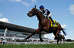 ARLINGTON HEIGHTS, IL - AUGUST 12:  Oscar Performance #4, ridden by Jose Ortiz, wins the Secretariat Stakes on Arlington Million Day at Arlington Park on August 12, 2017 in Arlington Heights, Illinois. (Photo by Jon Durr/Eclipse Sportswire/Getty Images)
