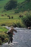 Europe/France/Auvergne/15/Cantal/Parc Naturel Régional des Volcans/Massif du Puy Mary/Vallée de la Cheylade: Michel Verdier pêche la truite - [AUTO N°267]