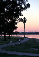 Athletes in the early morning with silhouetted palm trees<br />