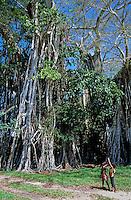Two children in a grove of banyan trees on the island of Efate, Vanuatu.