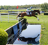 Westbound Road looks at his reflection at the water jump on the Queens Cup timber course.