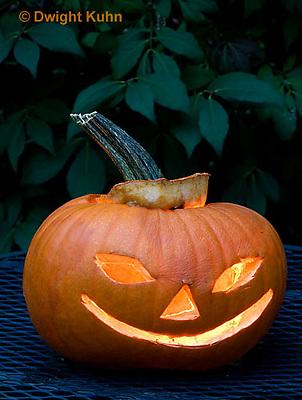 DC08-604z  Jack-o-Lantern Pumpkin with candle light, Halloween