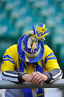 A Clermont fan looks dejected after losing the Heineken Cup semi-final match between Saracens and ASM Clermont Auvergne at Twickenham Stadium on Saturday 26th April 2014 (Photo by Rob Munro)