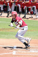 Dominic Ficociello #20 of the Arkansas Razorbacks plays against the Charlotte 49ers in the Tempe Regional of the NCAA baseball post-season at Packard Stadium on June 5, 2011 in Tempe, Arizona. .Photo by:  Bill Mitchell/Four Seam Images.
