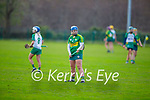 Kerry's Jackie Horgan in action against Meath in the Camogie Intermediate Championship
