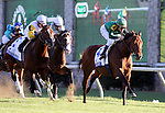 Gio Ponte with Ramon Dominguez up wins The Shadwell Turf Mile at Keeneland Race Course. 10.09.2010..photo Ed Van Meter