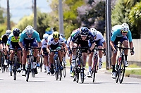 Matt Gibson (JLT Condor, centre) wins Stage Three of the 2018 NZ Cycle Classic UCI Oceania Tour (Masterton to Martinborough) in Wairarapa, New Zealand on Friday, 19 January 2018. Photo: Dave Lintott / lintottphoto.co.nz