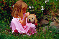 Five year old girl delights in playing with her golden retriever puppy.