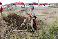 A Tibetan woman digging a hole near new buildings on the Tibetan Plateau, in western China. Relocation communities been created to house nomadic herders moved from the highland grasslands. The nomads have been blamed for contributing to the deterioration of the grasslands, so have been moved, sometimes forcibly, into newly built towns that can be found across the plateau.